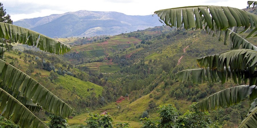 Burundi, and its coffee-growing highlands!