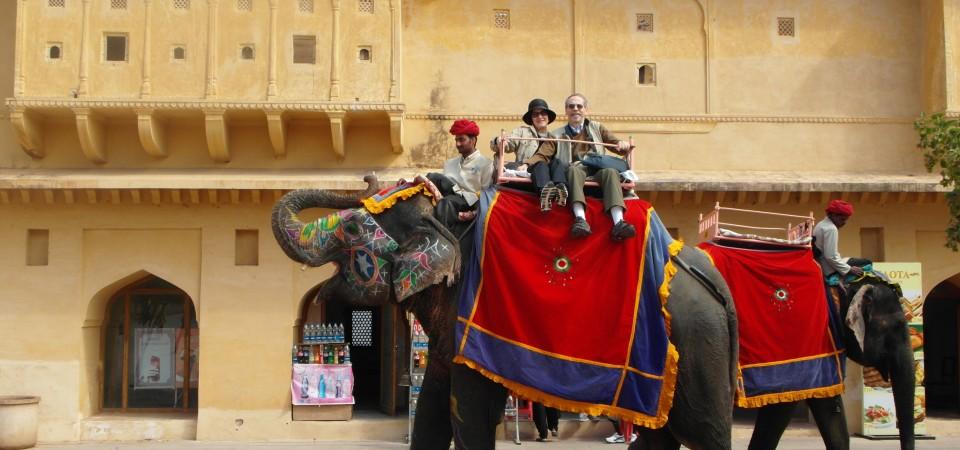 Hot air balloon, elephants and peacocks – Jaipur !