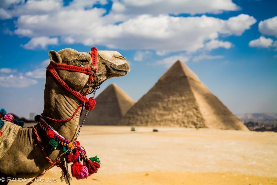 Egypt   ... Photo Dalocollis.com