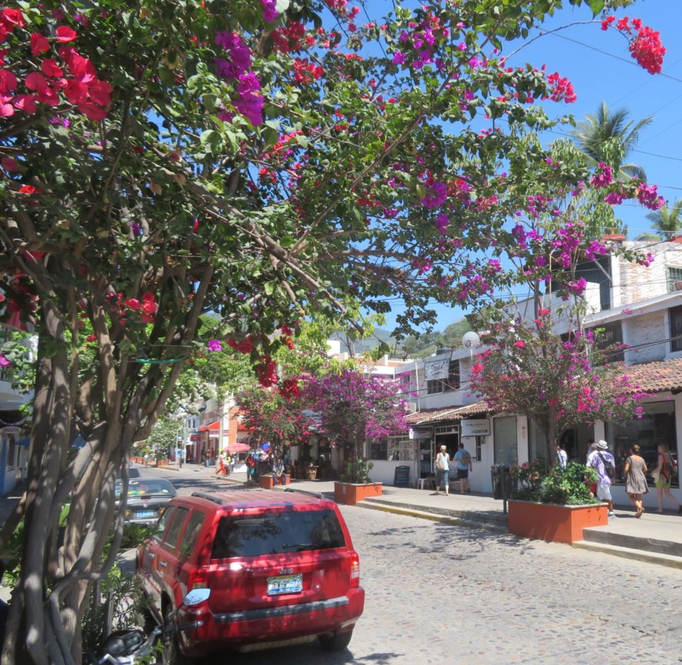 Walking the streets of Old Puerto Vallarta