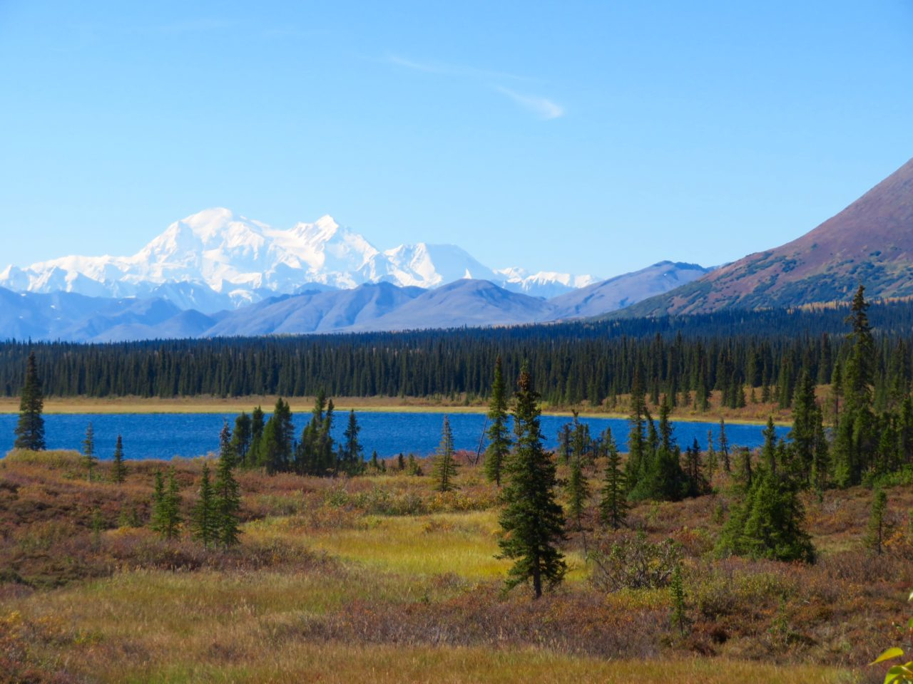 View of Denali from Fairbanks to Achorage Highway ~ <em><strong>Alaska Cruise Tour</strong></em>