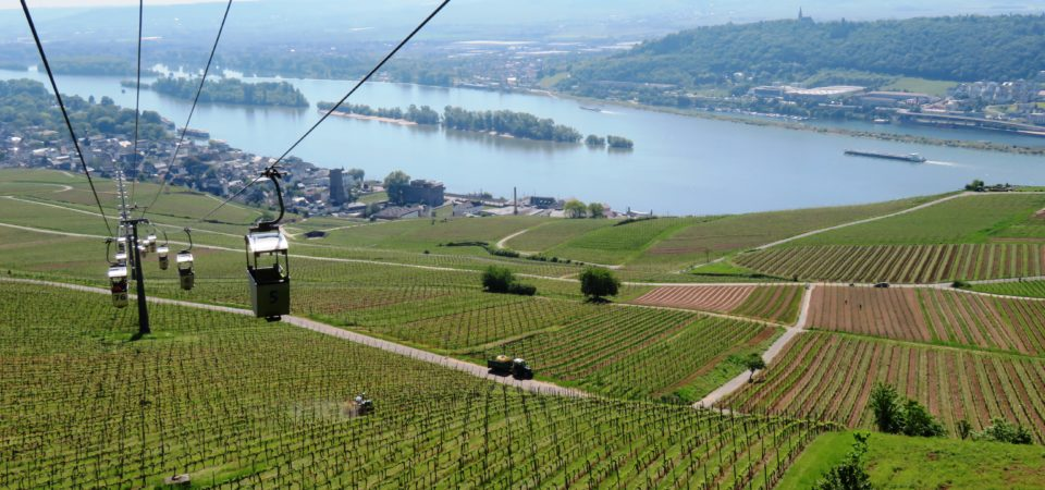 EARLY SUMMER ON THE RHINE WITH AMAWATERWAYS